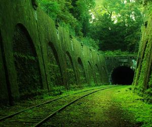 green, nature, and abandoned image