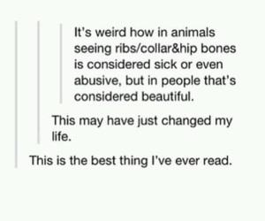 animals, collar bones, and true image