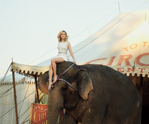 Reese Witherspoon, elephant, and water for elephants image