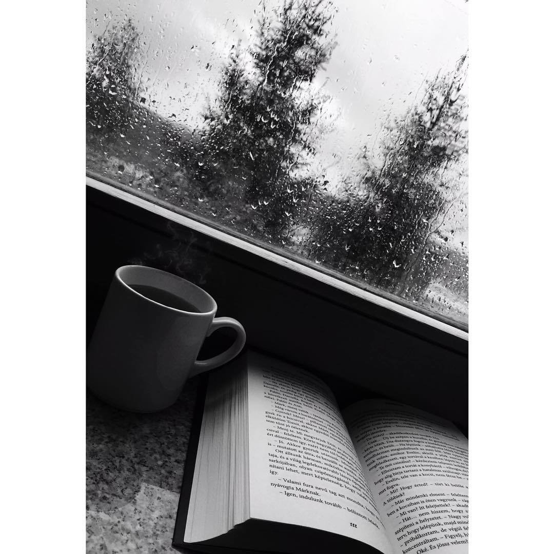 black and white, read, and bexi image