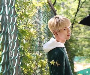 idol, kpop, and sang image
