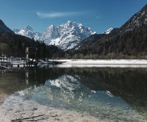 beautiful nature, nature, and calmness image