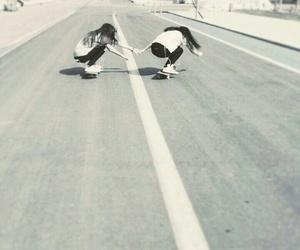 skater girls image