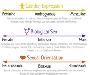 androgynous, attraction, and gender image