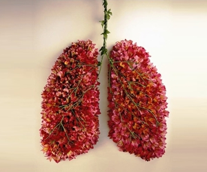 flower, green, and lungs image