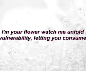 flower, Lyrics, and unfold image