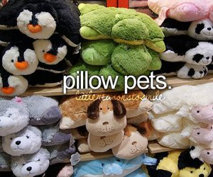 pillow pets and little reasons to smile image