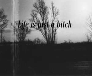 bitch, black and white, and life image