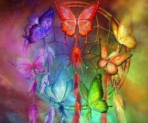 butterfly, colorful, and dreamcatcher image