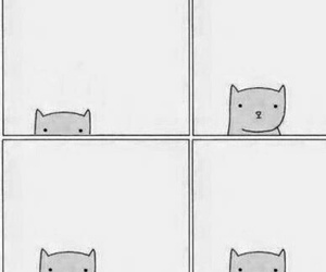 cat, like it, and me image