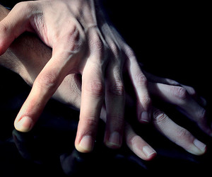 anatomy, pale, and hands image