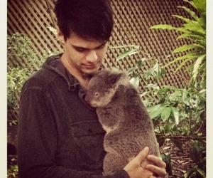 Koala, blake harnage, and versaemerge image