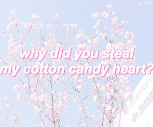 pastel, quotes, and pink image