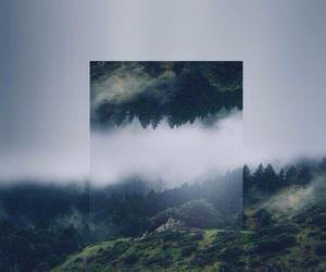 Image by Anastasia Tesler