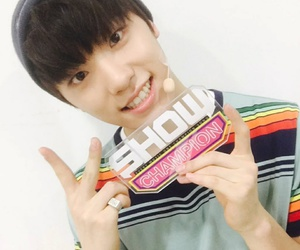 dino and Seventeen image