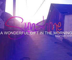 quote, quotes, and sunshine image