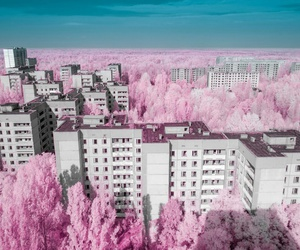 pink, city, and sky image