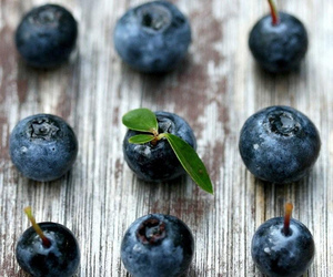 blue, food, and photography image
