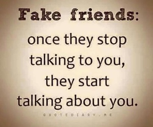 fake, quotes, and friends image