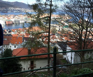 bergen, nature, and norway image