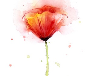 flowers, art, and poppy image