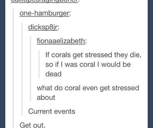 puns, tumblr, and funny image