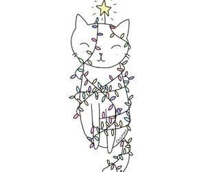 cat, black, and stars image