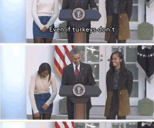 funny, obama, and tumblr post image