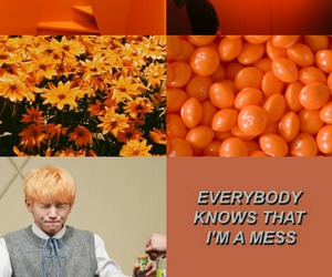 flowers, kpop, and woozi image