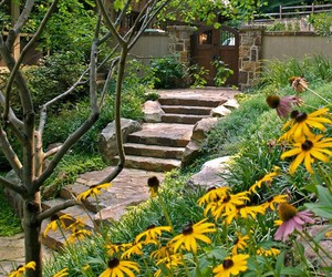 gardens, home garden ideas, and garden designs image