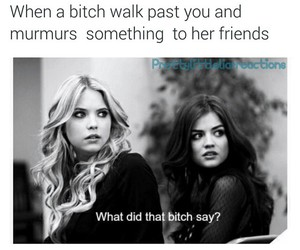 pretty little liars, bitch, and pll image