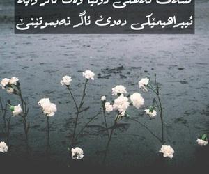 flower, heart, and kurdish image