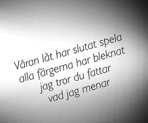 svenska, citat, and kkv image