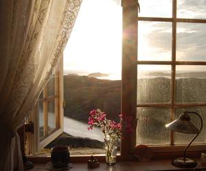 window, flowers, and sun image
