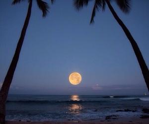 beach, moon, and night image