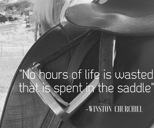 equestrian, passion, and quote image