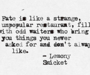 fate, quote, and lemony snicket image