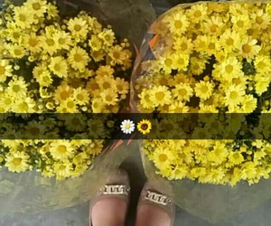 flower, snapchat, and cute image