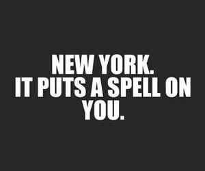 new york and nyc image