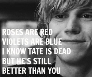 dead, red, and roses image