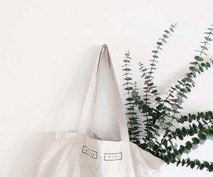 bag and plants image