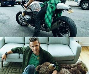 bear, bike, and deadpool image