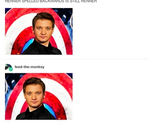 funny, hawkeye, and jeremy renner image