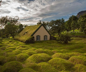 iceland, house, and green image