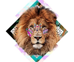 lion, hipster, and colors image