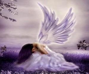 angel, purple, and wings image