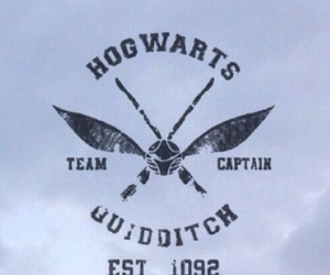 harry potter, hogwarts, and quidditch image