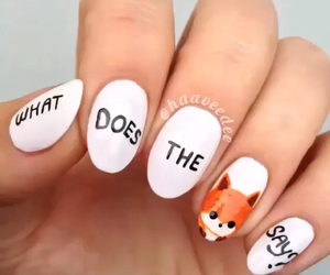 fox, nails, and red image