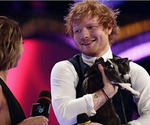 cat, ed sheeran, and intervew image