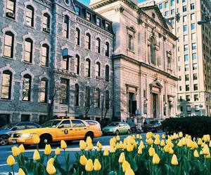 flowers, city, and street image